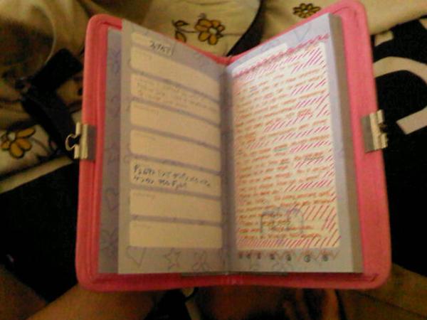 diary jaman SD
